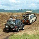 Ontdek alle mogelijkheden voor een safari!