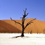 De beste reistijd voor een rondreis Namibië